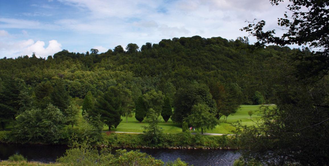 Woodenbridge View