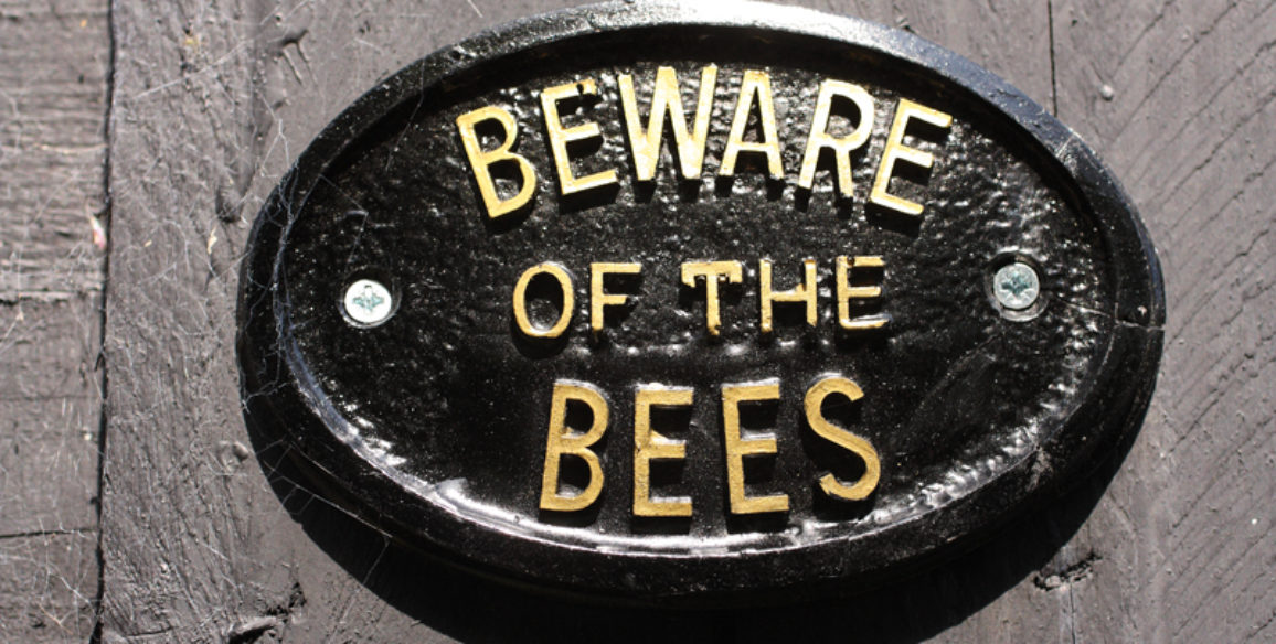 Beware of Bees