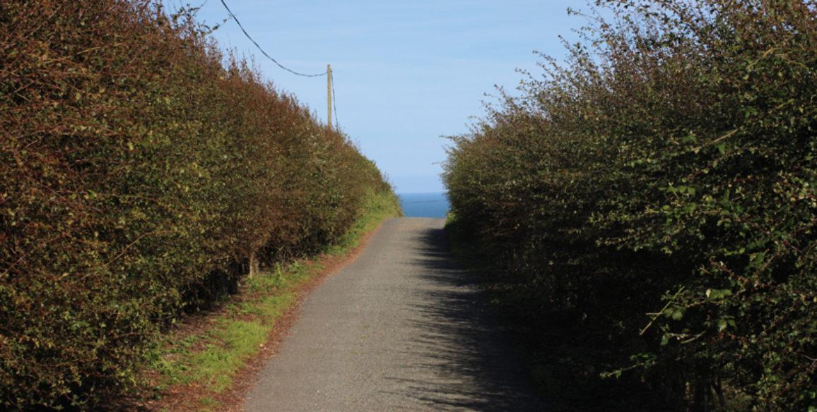 Wicklow Head Road