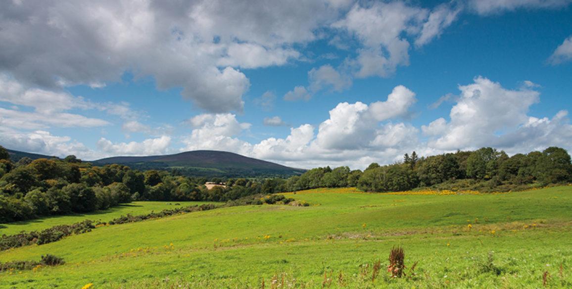 Ballyknockan Field