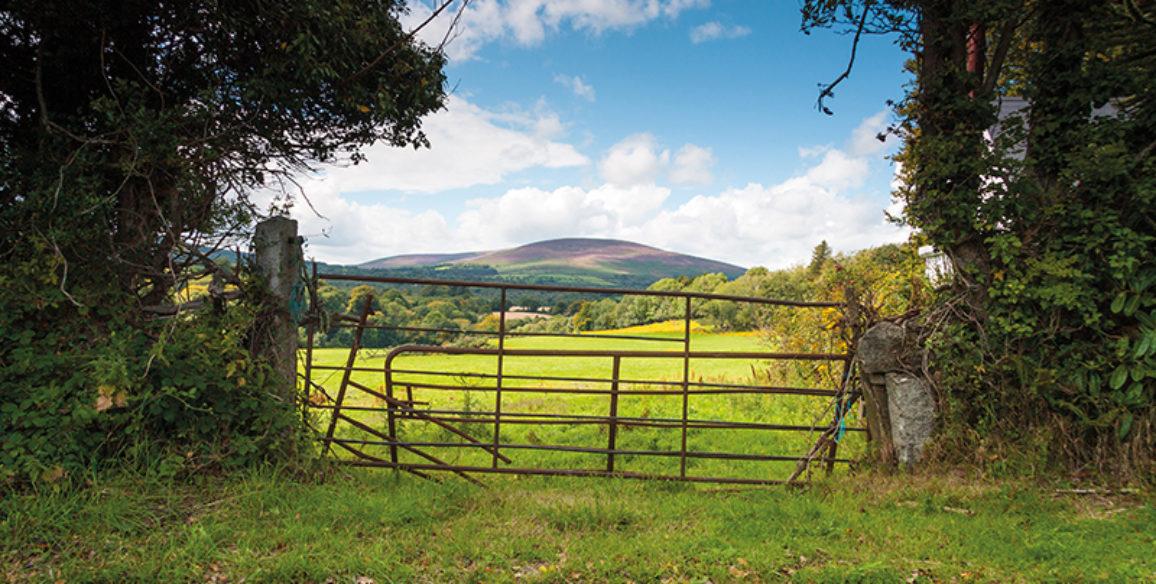 Ballyknockan Farm Gate