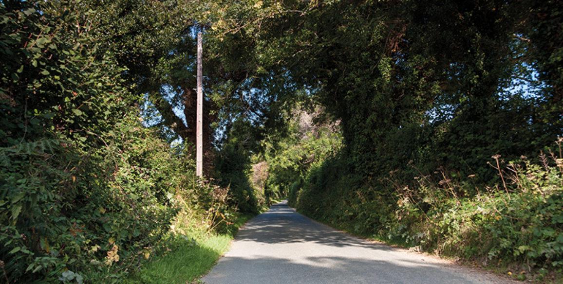 Ballymacahara Road