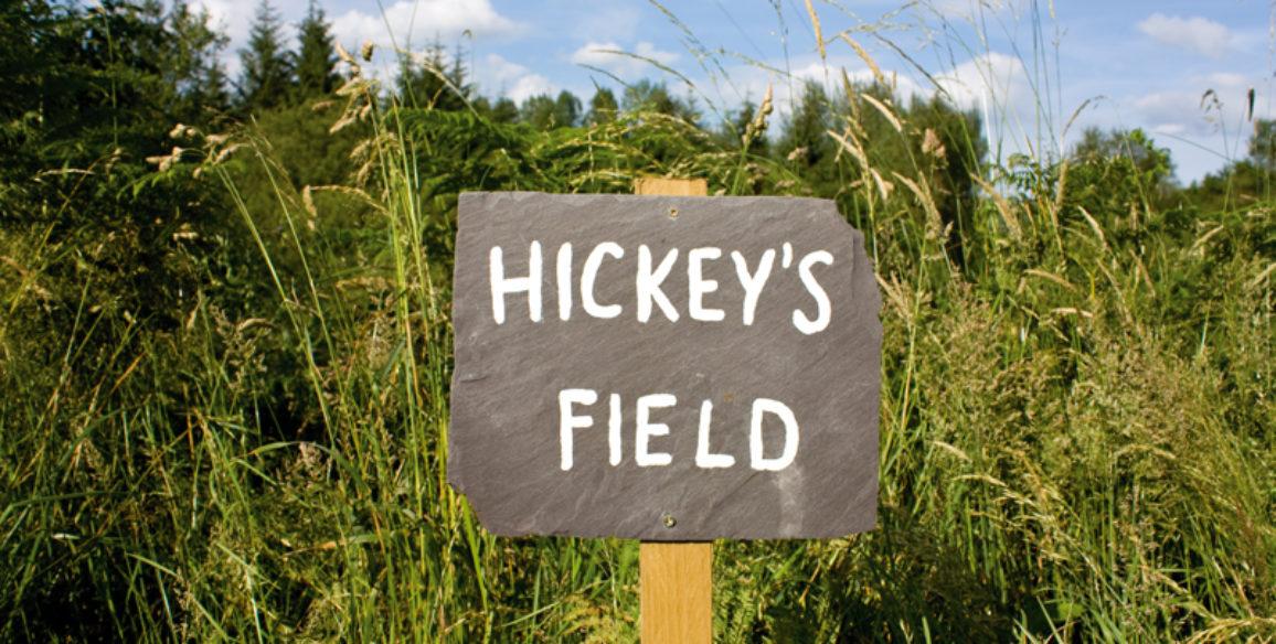 Hickey's Field