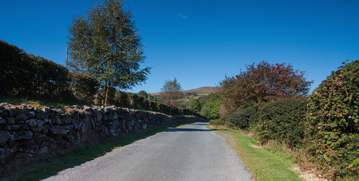 Lough Dan Road View