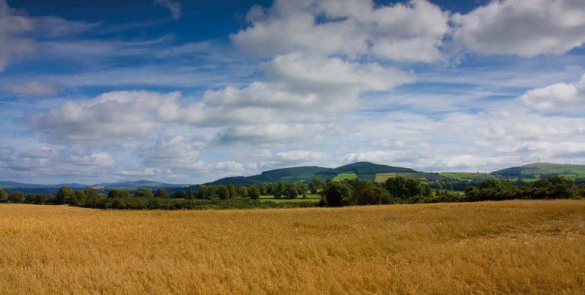 Killinure View
