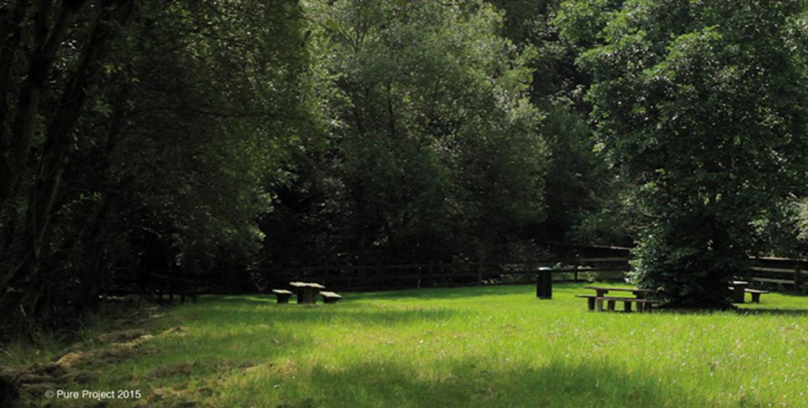 Picninc Area