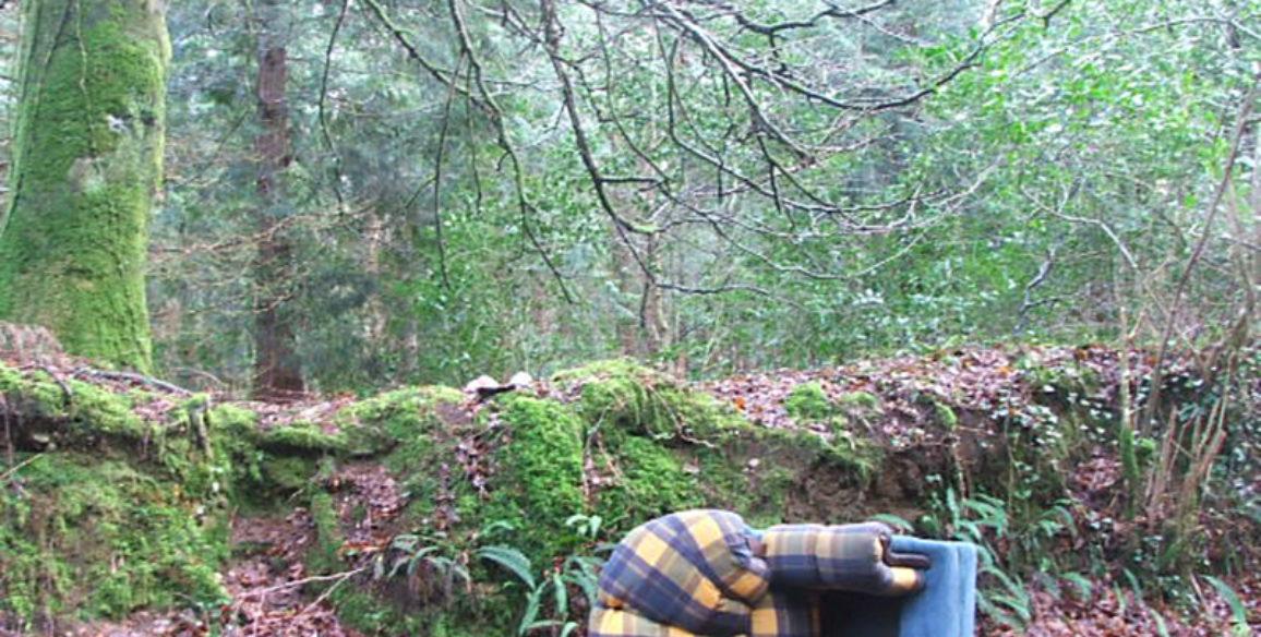 Woodland Dumping