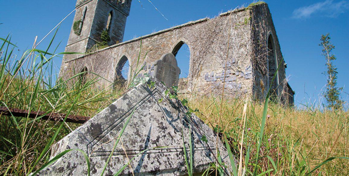 Avoca Kilmagig Castlemacadam Red Kite Walk Pure Mile