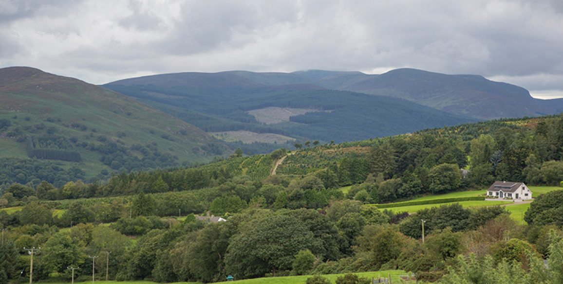 Ballinabarney Pure Mile