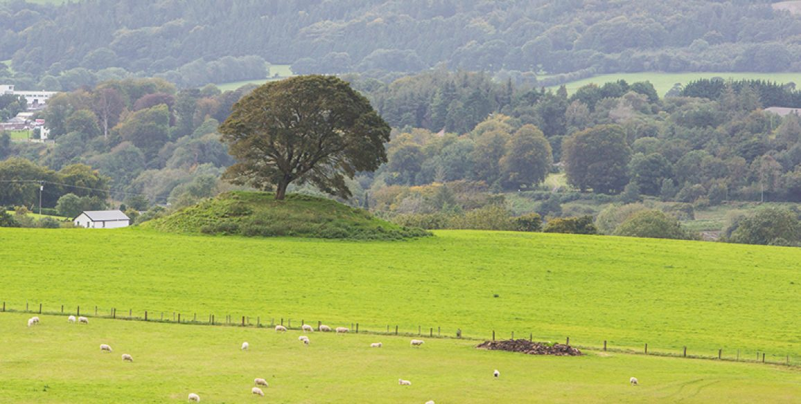 Butterhill, Woodend, Lugnagun Pure Mile
