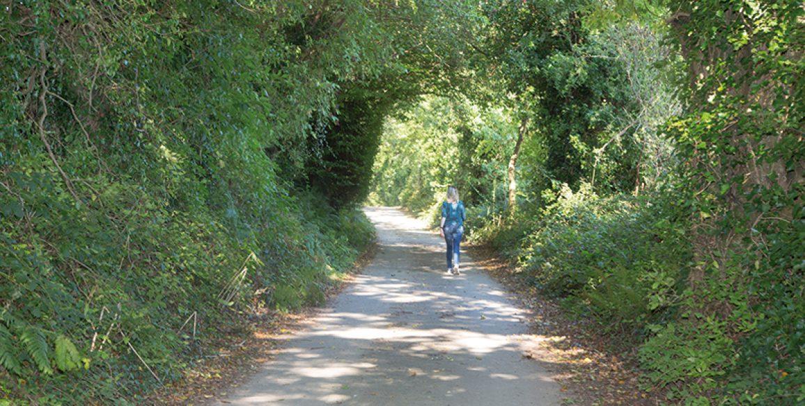 Jim's Way Aughrim Pure Mile